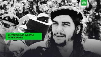 Команданте Че Гевара— человек, ставший символом протеста