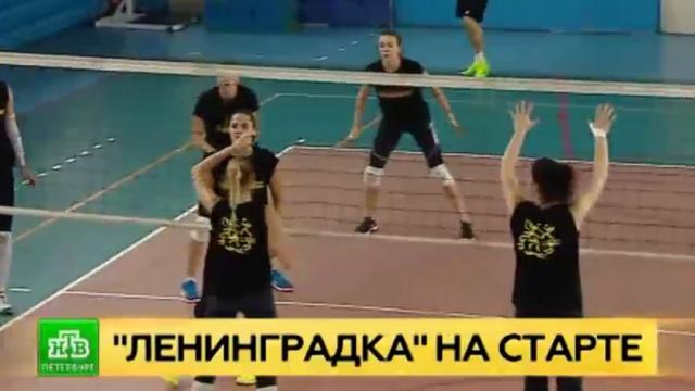 «Ленинградка» начинает новый волейбольный сезон в боевой готовности.Санкт-Петербург, волейбол.НТВ.Ru: новости, видео, программы телеканала НТВ