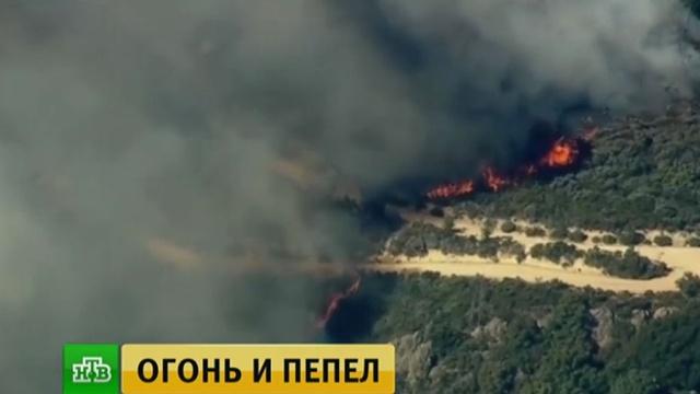 Лесные пожары в Калифорнии уничтожили целые поселения.США, лесные пожары, пожары.НТВ.Ru: новости, видео, программы телеканала НТВ