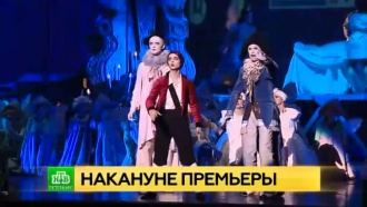 Автор «Оскара и Розовой дамы» увидит премьеру мюзикла в Петербурге