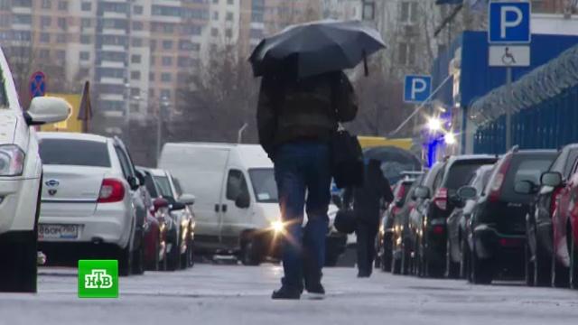 МЧС предупреждает москвичей орезком ухудшении погоды.Германия, стихийные бедствия, погода, Европа, Москва, Чехия, штормы и ураганы.НТВ.Ru: новости, видео, программы телеканала НТВ