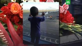Годовщина авиакатастрофы над Синаем