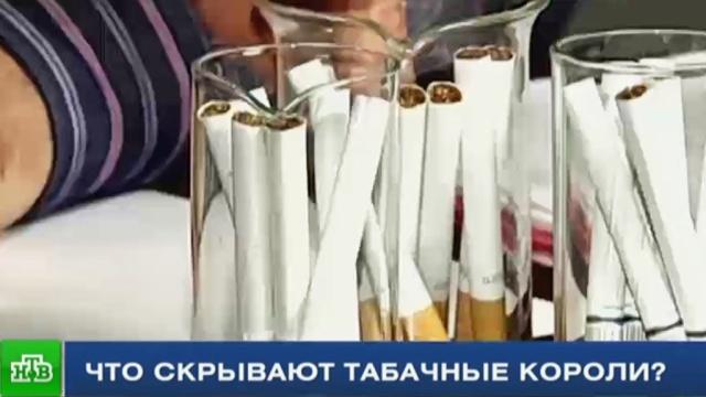Репортер НТВ выяснил правду о составе сигарет.Минздрав, курение, расследование, табак.НТВ.Ru: новости, видео, программы телеканала НТВ