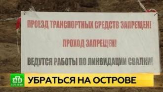 На Канонерском острове Петербурга ликвидируют крупную несанкционированную свалку