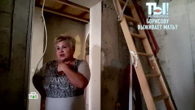 Дана Борисова обвинила мать в ограблении своей квартиры.знаменитости, семья, скандалы, эксклюзив.НТВ.Ru: новости, видео, программы телеканала НТВ