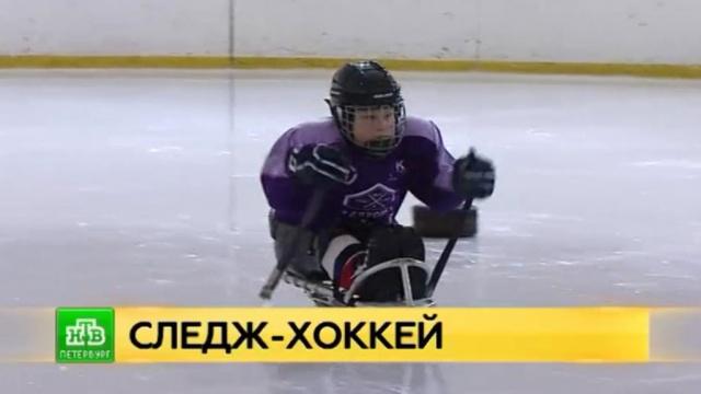 Спортивная надежда: как следж-хоккей помогает вреабилитации петербургских детей-инвалидов.Санкт-Петербург, дети и подростки, инвалиды, спорт, хоккей.НТВ.Ru: новости, видео, программы телеканала НТВ