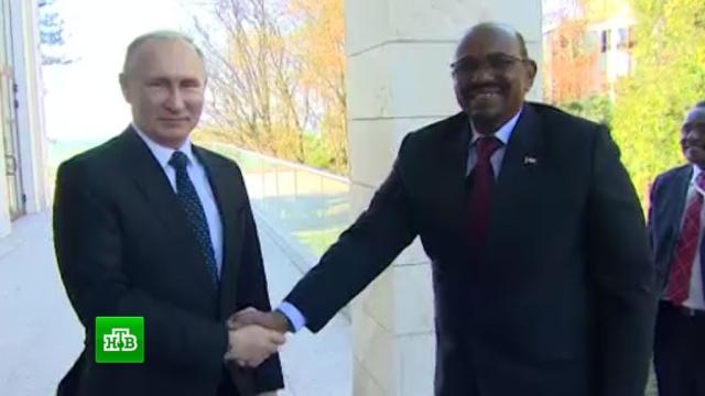 Президент Судана обсудил с Путиным экономическое сотрудничество.визиты, Путин, Сочи, Судан.НТВ.Ru: новости, видео, программы телеканала НТВ