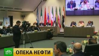 Новак: бюджет РФ получит более 1 трлн рублей, благодаря сделке ОПЕК+