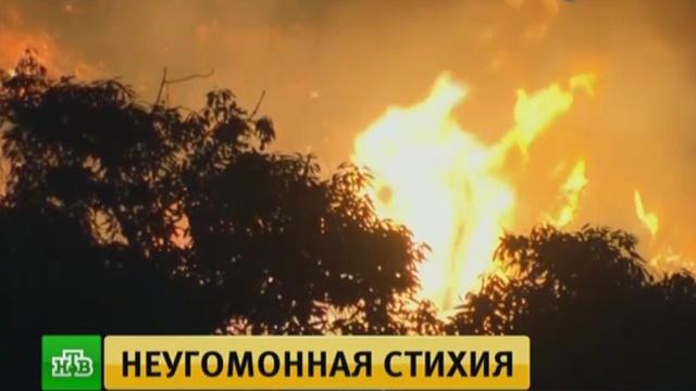 ВСанта-Барбаре эвакуируют жителей из-за лесных пожаров.США, лесные пожары, стихийные бедствия.НТВ.Ru: новости, видео, программы телеканала НТВ