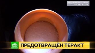 Террористы планировали взорвать бомбу вКазанском соборе Петербурга