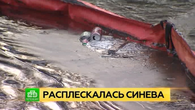 По Неве разлилось несколько десятков литров дизельного топлива.Нева, Санкт-Петербург, разлив нефтепродуктов и химикатов, экология.НТВ.Ru: новости, видео, программы телеканала НТВ