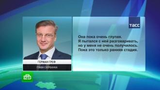 «Робота обидеть может каждый»: «Яндекс» ответил Грефу на слова о глупости «Алисы»
