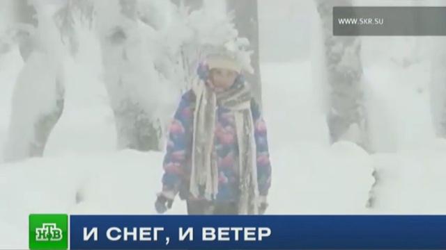 На Сахалине из-за циклона остаются обесточенными 15 сел.Сахалин, зима, погода, снег, штормы и ураганы.НТВ.Ru: новости, видео, программы телеканала НТВ