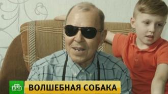 В&nbsp;Новокузнецке школьники помогли слепому пенсионеру обрести <nobr>собаку-поводыря</nobr>