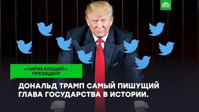 Дональд Трамп— самый «чирикающий» президент.Twitter, ЗаМинуту, Интернет, США, Трамп Дональд.НТВ.Ru: новости, видео, программы телеканала НТВ