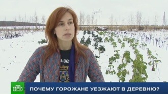 Городская деревенщина: россияне ищут себя вдали от мегаполисов