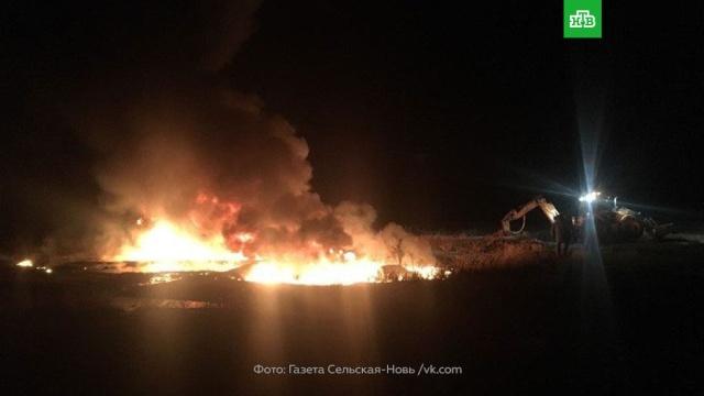 Пожарные справились с огнем на месте разлива нефти в саратовском селе.Саратовская область, нефтепровод, пожары.НТВ.Ru: новости, видео, программы телеканала НТВ