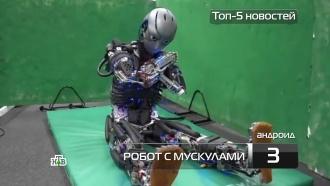 <nobr>Топ-5</nobr> новостей из мира науки итехнологий по версии «Чуда техники», 21января