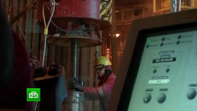 Новак: Москва готова продолжить сотрудничество с ОПЕК на нефтяном рынке.нефть, ОПЕК, экономика и бизнес, энергетика.НТВ.Ru: новости, видео, программы телеканала НТВ
