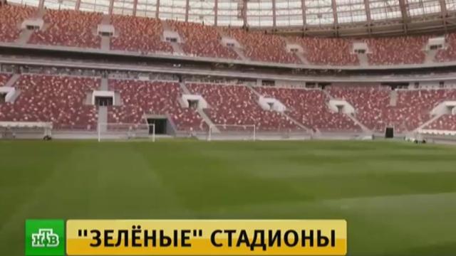 «Стадион Санкт-Петербург» и «Лужники» прошли экологическую сертификацию FIFA.спорт, стадионы, ФИФА, футбол, экология.НТВ.Ru: новости, видео, программы телеканала НТВ