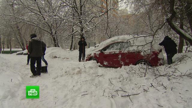 Московские аэропорты наладили работу после мощнейшего снегопада.аэропорт Домодедово, аэропорты, зима, погода, погодные аномалии, снег.НТВ.Ru: новости, видео, программы телеканала НТВ