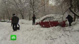 Московские аэропорты наладили работу после мощнейшего снегопада