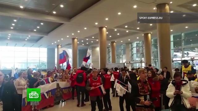 Российских хоккеистов встретили вСеуле гимном ифлагами РФ.Олимпиада, Сеул, Южная Корея, спорт, хоккей.НТВ.Ru: новости, видео, программы телеканала НТВ