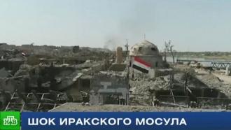 Город мертвых: что происходит восвобожденном коалицией Мосуле