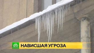 Коммунальщики вышли на очистку питерских крыш от снега и сосулек
