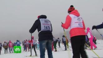 Акция «Лыжня России» стартовала в 73 регионах страны