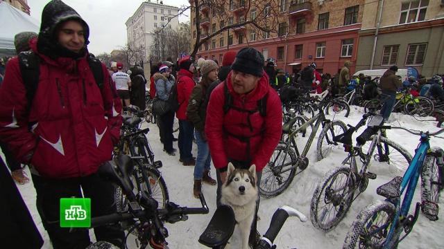 В Москве прошел третий ежегодный велопарад.велоспорт, Москва.НТВ.Ru: новости, видео, программы телеканала НТВ