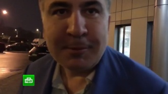 Саакашвили попросил ЕС о помощи в борьбе с Порошенко