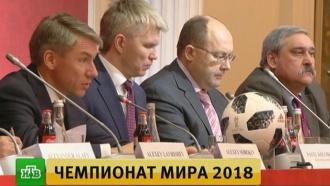 ВФИФА обсудили страхи иностранцев перед <nobr>ЧМ-2018</nobr>