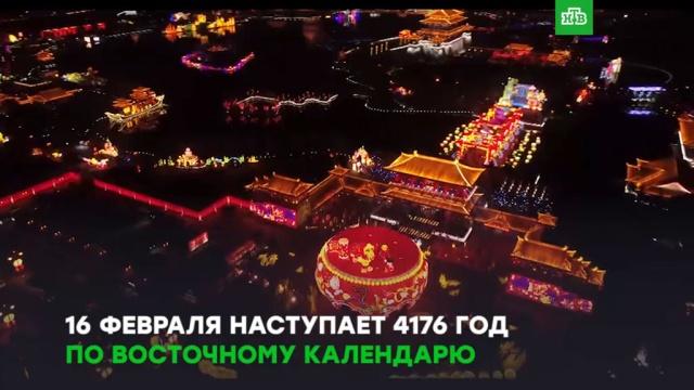 Новый год по восточному календарю: как встретить праздник по-китайски.ЗаМинуту, Китай, Новый год, торжества и праздники.НТВ.Ru: новости, видео, программы телеканала НТВ