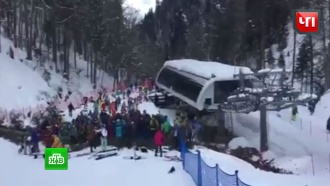 Падение 20-метровой сосны на лыжницу в Сочи сняла камера