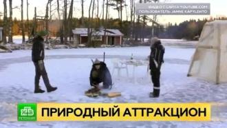 Финны соорудили самую большую ледяную карусель