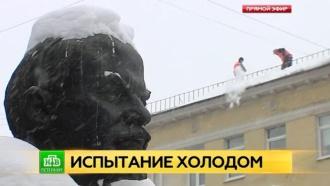 В Северную столицу приходят сибирские морозы