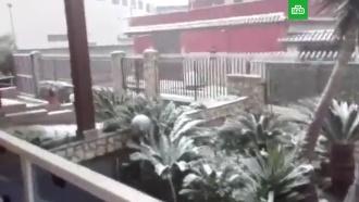 ВНеаполе впервые за полвека выпал снег