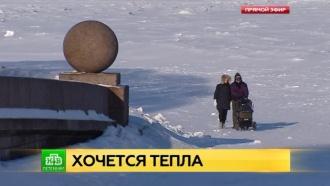Петербуржцы готовятся пережить самую холодную ночь этой зимы