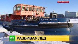 «Невская застава» бросает вызов ледяным торосам