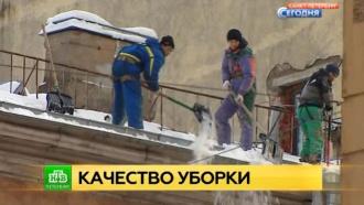 Вице-губернатор предложил очищать Петербург от снега по-шведски