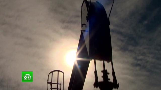 Exxon Mobil отказалась от проектов с«Роснефтью» из-за санкций.Роснефть, США, нефть.НТВ.Ru: новости, видео, программы телеканала НТВ