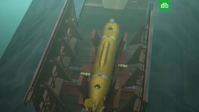 ВРФ создан подводный беспилотник, способный двигаться на сверхбольшой глубине.армия и флот РФ, оружие, президент РФ, Путин, ракеты, ядерное оружие.НТВ.Ru: новости, видео, программы телеканала НТВ