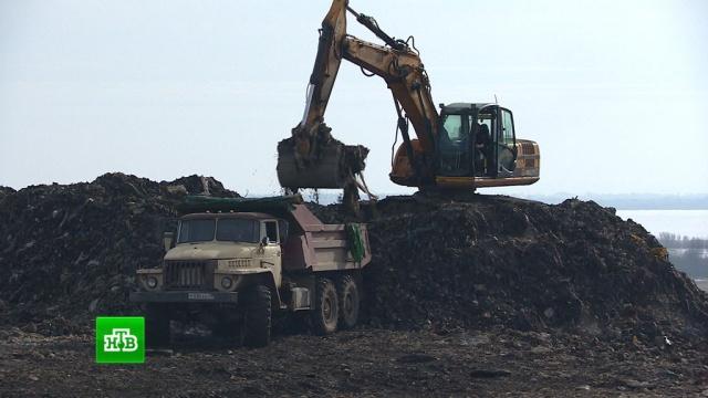 ВКалининградской области ликвидируют крупнейший врегионе мусорный полигон.Калининградская область, мусор, экология.НТВ.Ru: новости, видео, программы телеканала НТВ