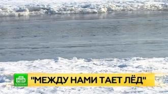 Спасатели просят петербуржцев не гулять по Неве