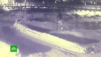 Уличная камера сняла нападение псов-людоедов на жителя Истры