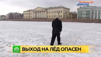 Спасатели прогоняют с Невы гуляющих по льду петербуржцев