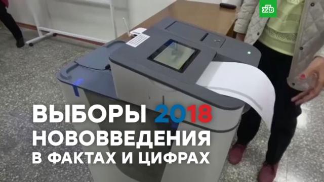 Выборы-2018: нововведения вфактах ицифрах.ЗаМинуту.НТВ.Ru: новости, видео, программы телеканала НТВ