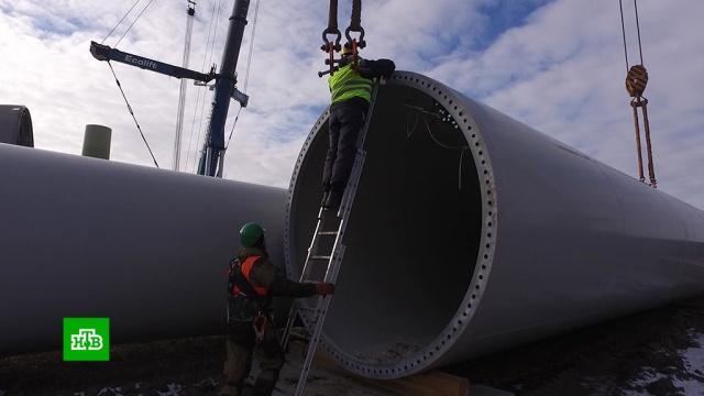 Под Калининградом готовится к запуску самая современная ветряная электростанция.Калининградская область, экология, электростанции.НТВ.Ru: новости, видео, программы телеканала НТВ