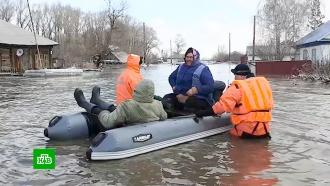 Жители затопленных на Алтае поселков возвращаются домой